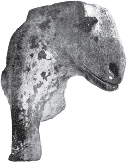 Állatprotomé Kiskőrös határából